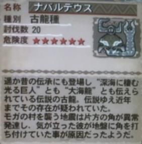 20100829_3