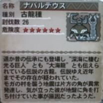 20100903_5