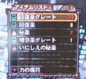 20100905_11