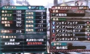 20100917_5