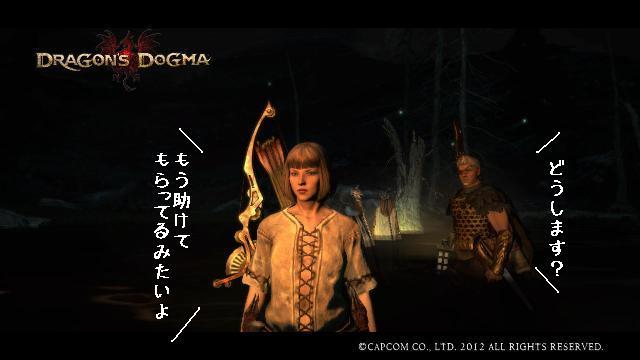 Dragons_dogma_screen_shot__20