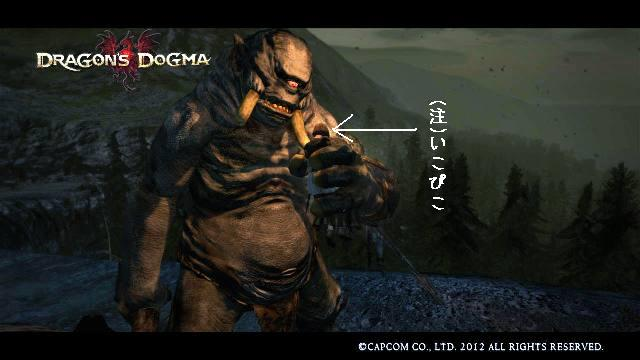 Dragons_dogma_screen_shot__32