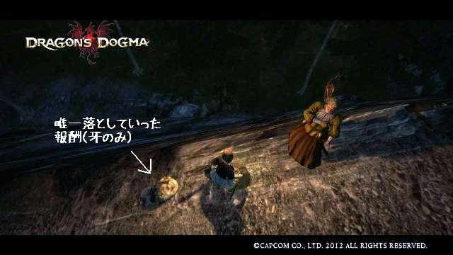 Dragons_dogma_screen_shot__34