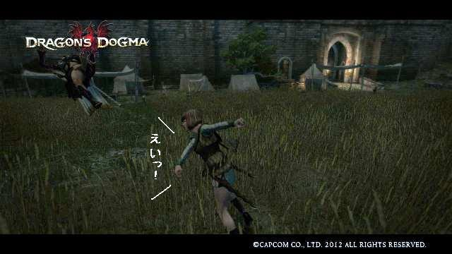 Dragons_dogma_screen_shot__61