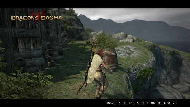 Dragons_dogma_screen_shot__74